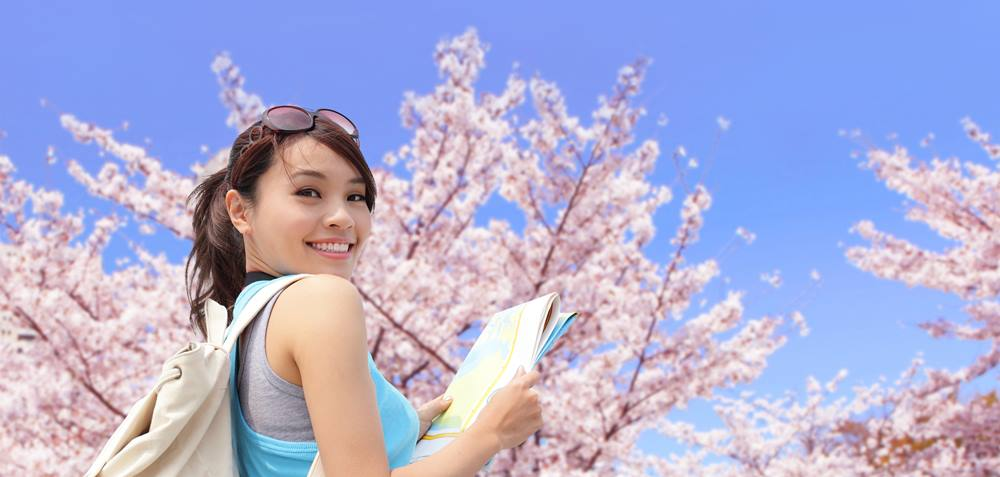 上野公園の桜、すごくきれいだったね。