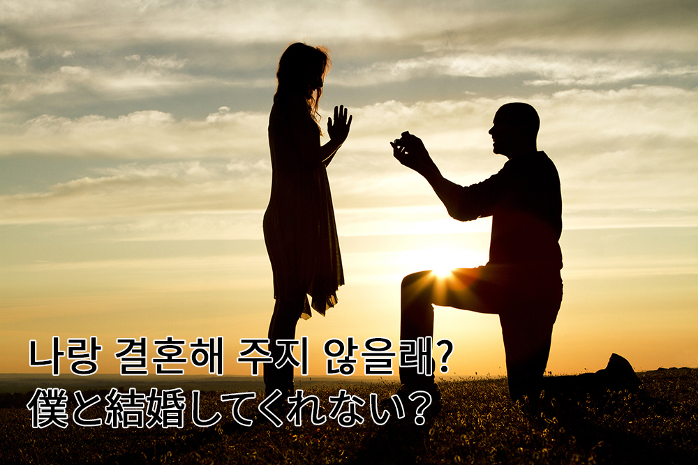 僕と結婚してくれない?